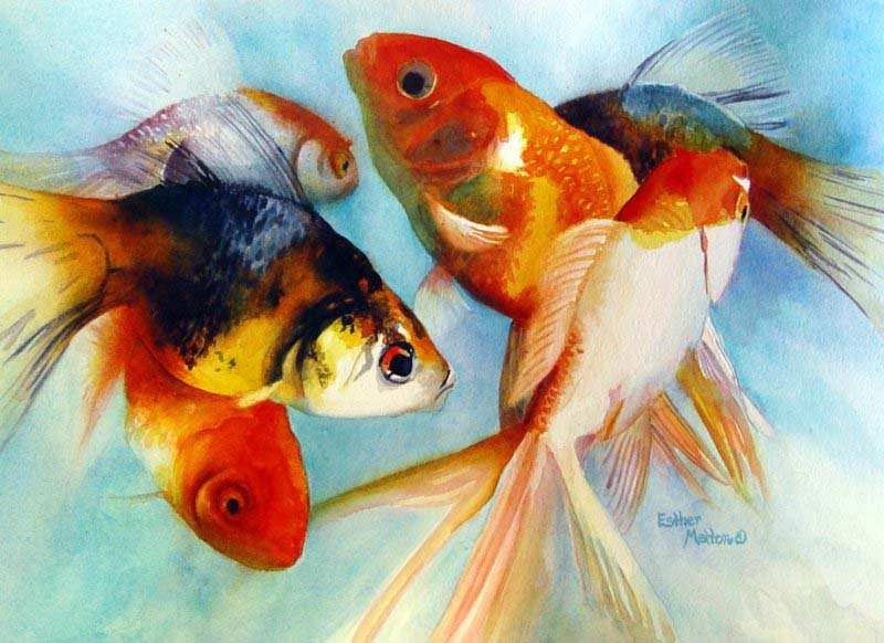 1000+ images about China Painting - Fish/Aquatic on ...